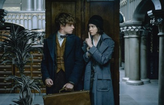 """Fantastic Beasts and Where to Find Them"" (2016) - Blu-ray News"