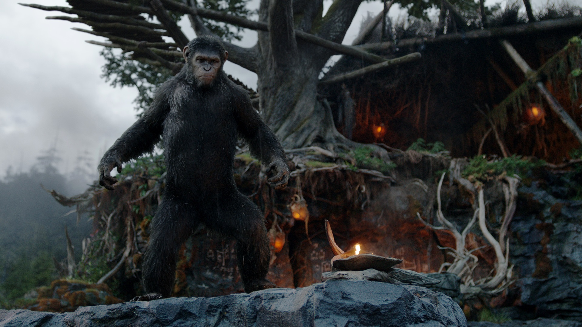 """Dawn of the Planet of the Apes"" (2014) - Trailer News (We Live Film)"