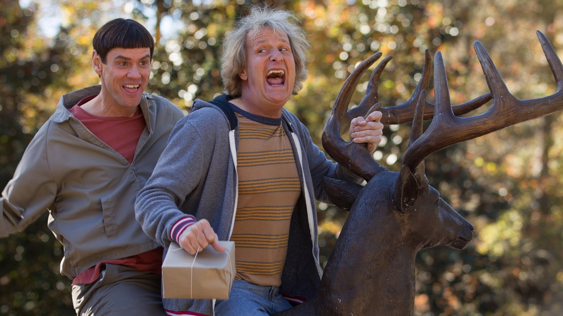 """Dumb and Dumber To"" (2014) - Weekend Box Office 11-14-14 - We Live Film"