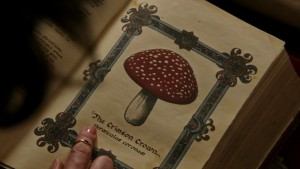 Once-Upon-a-Time-5x03-Siege-Perilous-Toadstool-Crimson-Crown-page