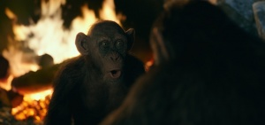 Bad Ape